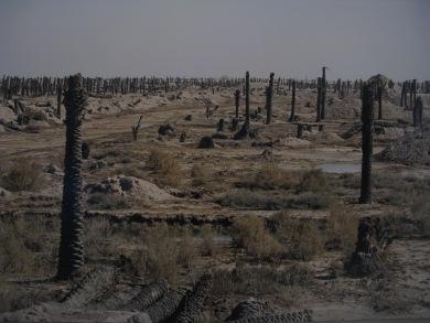 Irak, 2001(c) Sophie Ristelhueber